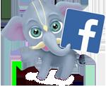 Страница Сарасвати в Фейсбуке